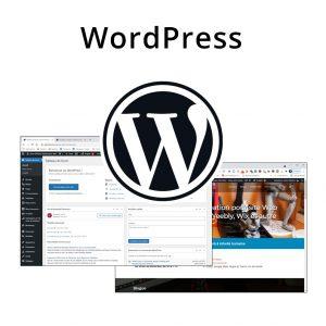 Forfaits WordPress