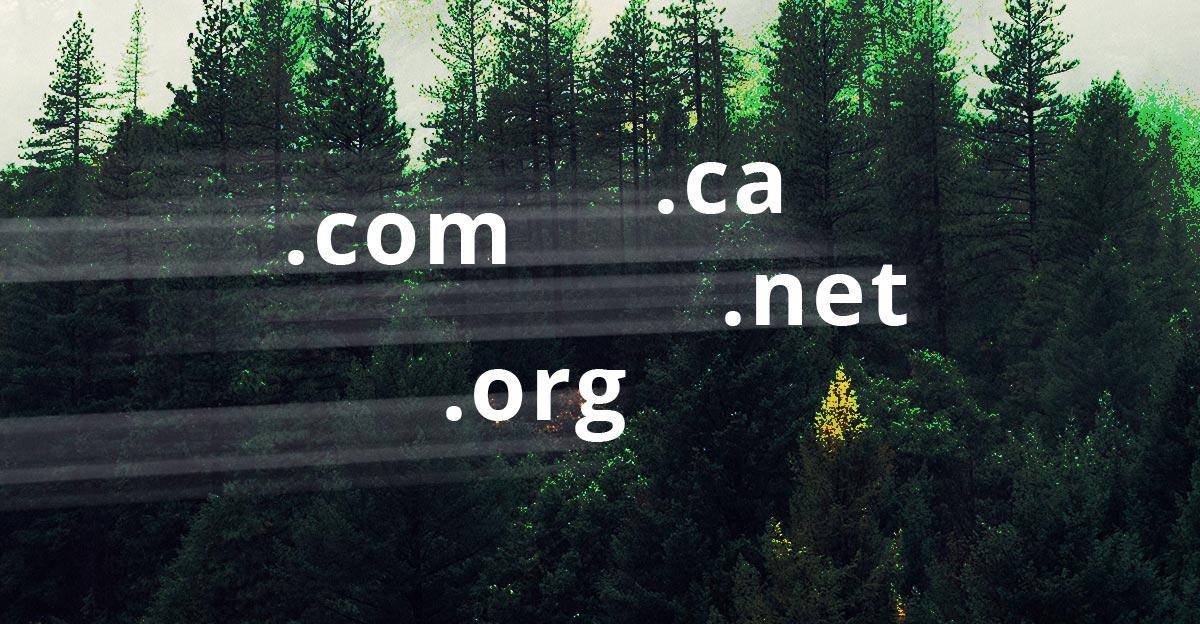 Changer le nom de domaine de votre site Web