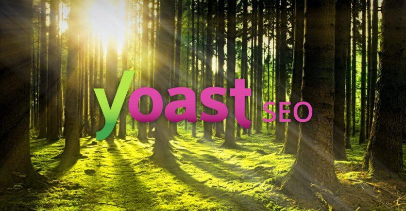 Yoast SEO Pro et le référencement d'un site WordPress